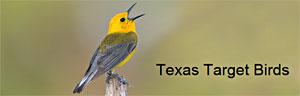 Texas Target Birds logo