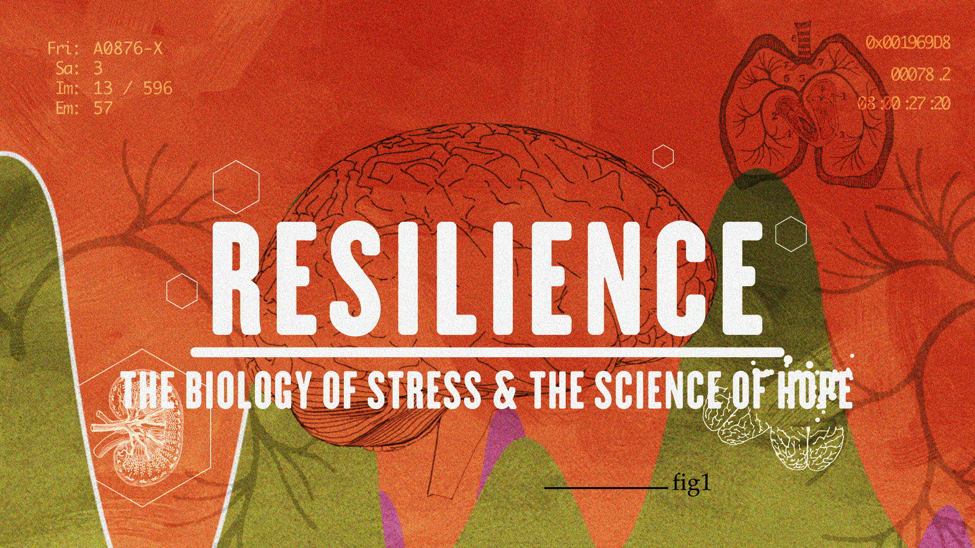 Resilience: Film Screening and Discussion