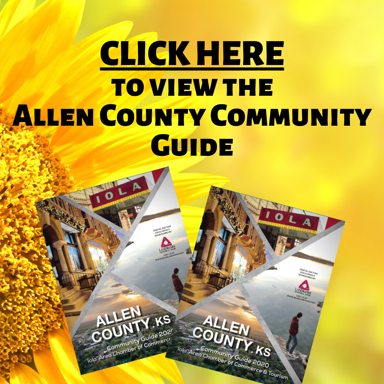 Allen County Community Guide