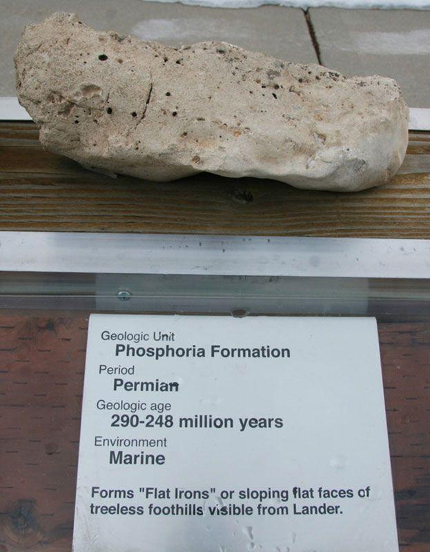 Phosphoria Formation - Permian