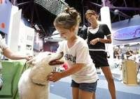Science Goes To The Dogs In Imagination Station Event