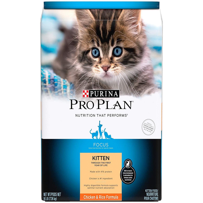 Purina Pro Plan (Kitten, Dry)