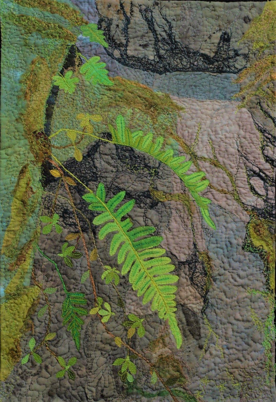 "Jackie Keizer - "" Licorice Ferns on a Rock Wall"""