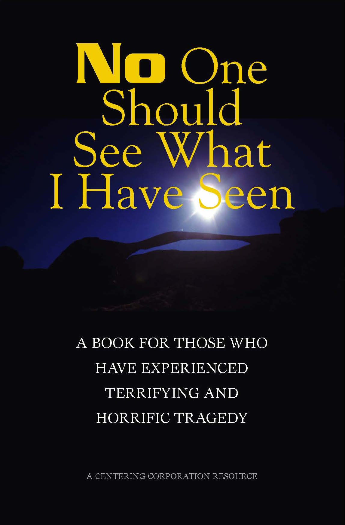 No One Should See What I Have Seen:  A Book for Those Who Have Experienced Terrifying and Horrific Tragedy