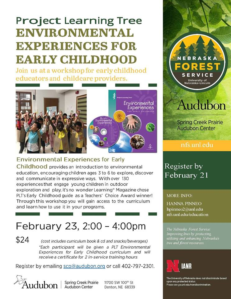 CE: Environmental Experience for Early Childhood