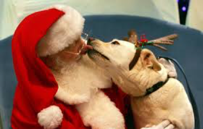 Pet Photos with Santa this Saturday!