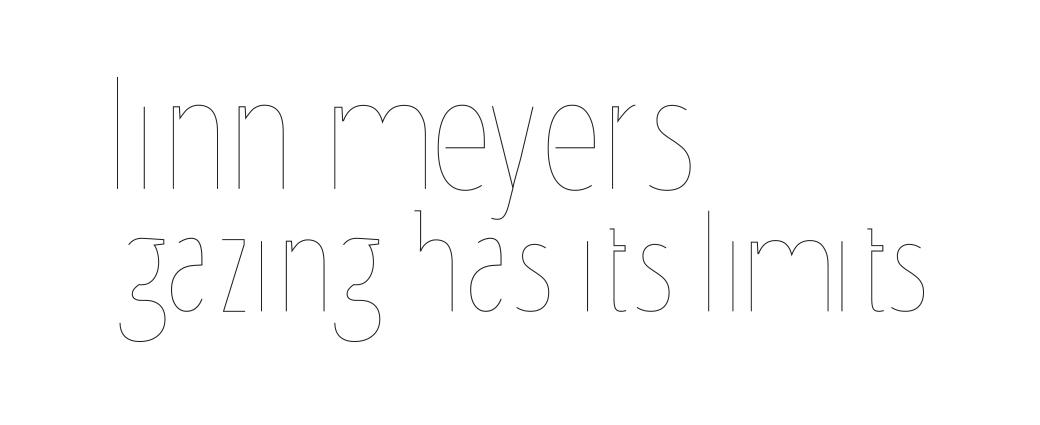 linn meyers: gazing has its limits