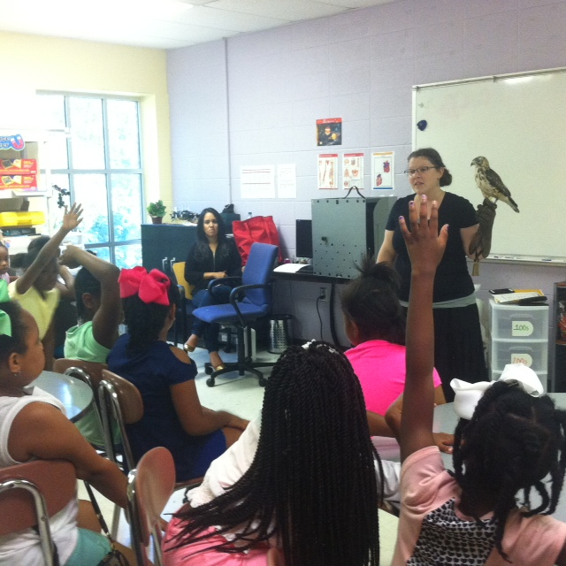 Wildlife comes to the classroom at Girls Inc. Summer Camp