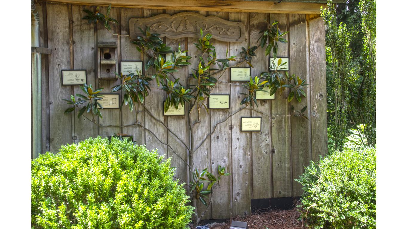 Cheekwood Garden 07