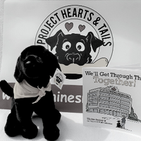 $30- Project Hearts & Tails Book & Brave Pup
