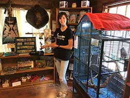 Visitor Experience Volunteers at the Raptor Education Center