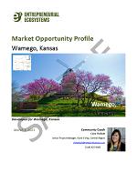 Market Opportunity Profiles