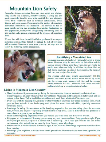 Mountain Lion Safety Sheet