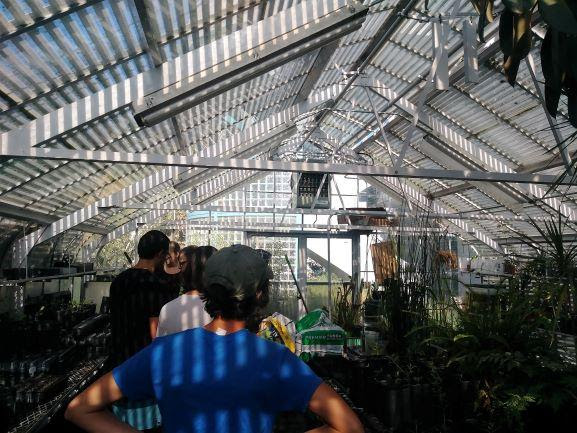 Volunteer Day at COS Greenhouse in Visalia