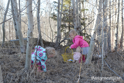 Egg Hunt in Bridle Trails State Park