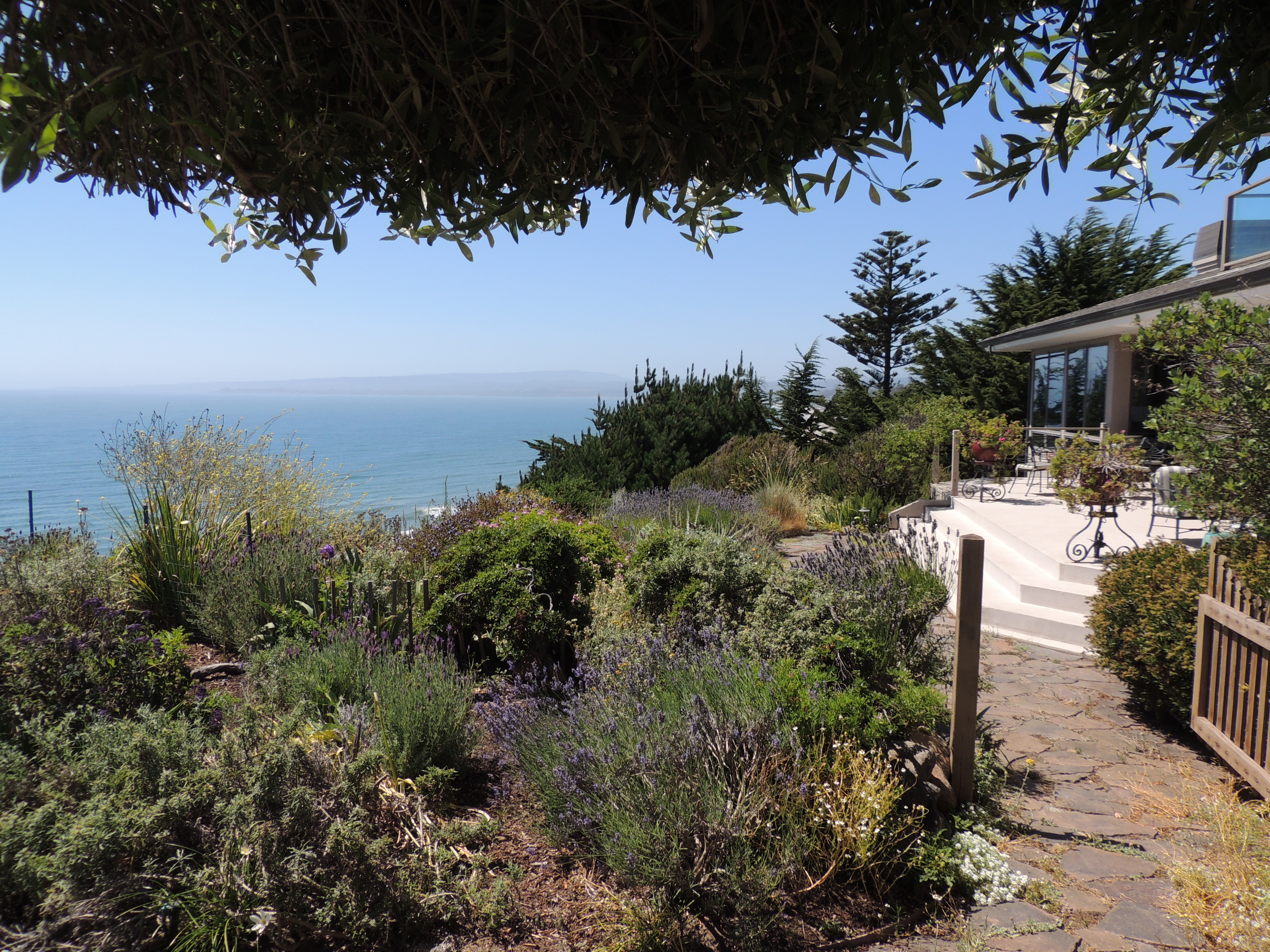 Culinary Journey Through the History of California - Dinner for 8 people in beautiful La Selva Beach.