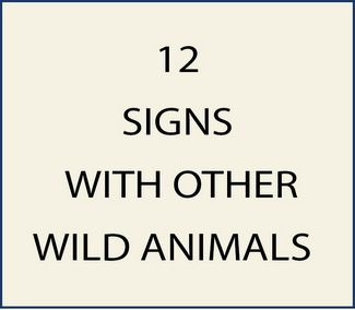 12. M22915 - Signs with Wild Boar, Beavers, Squirrels, Rabbits and Raccoons as Artwork