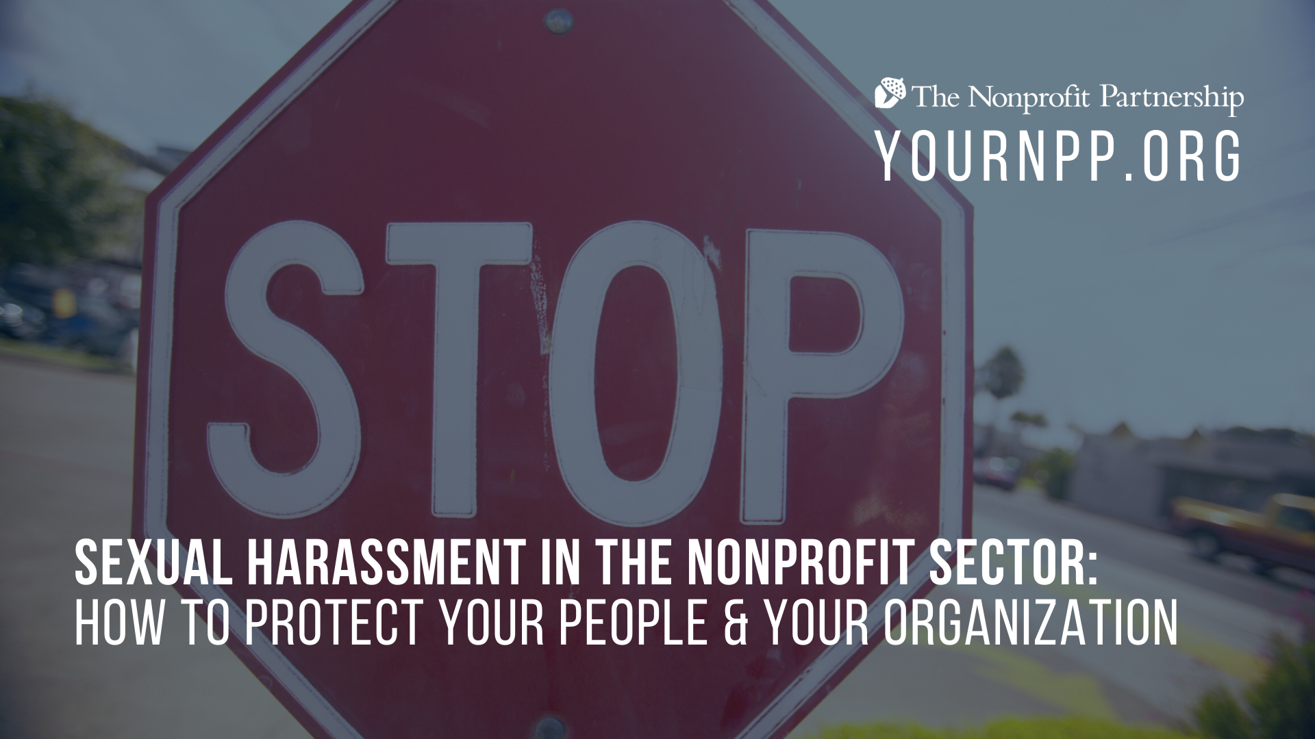 **POSTPONED - Sexual Harassment in the Nonprofit Sector: How to Protect Your People & Your Organization