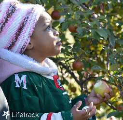 Therapeutic Preschool Visits Aamodt's Apple Farm