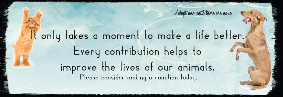 c donate
