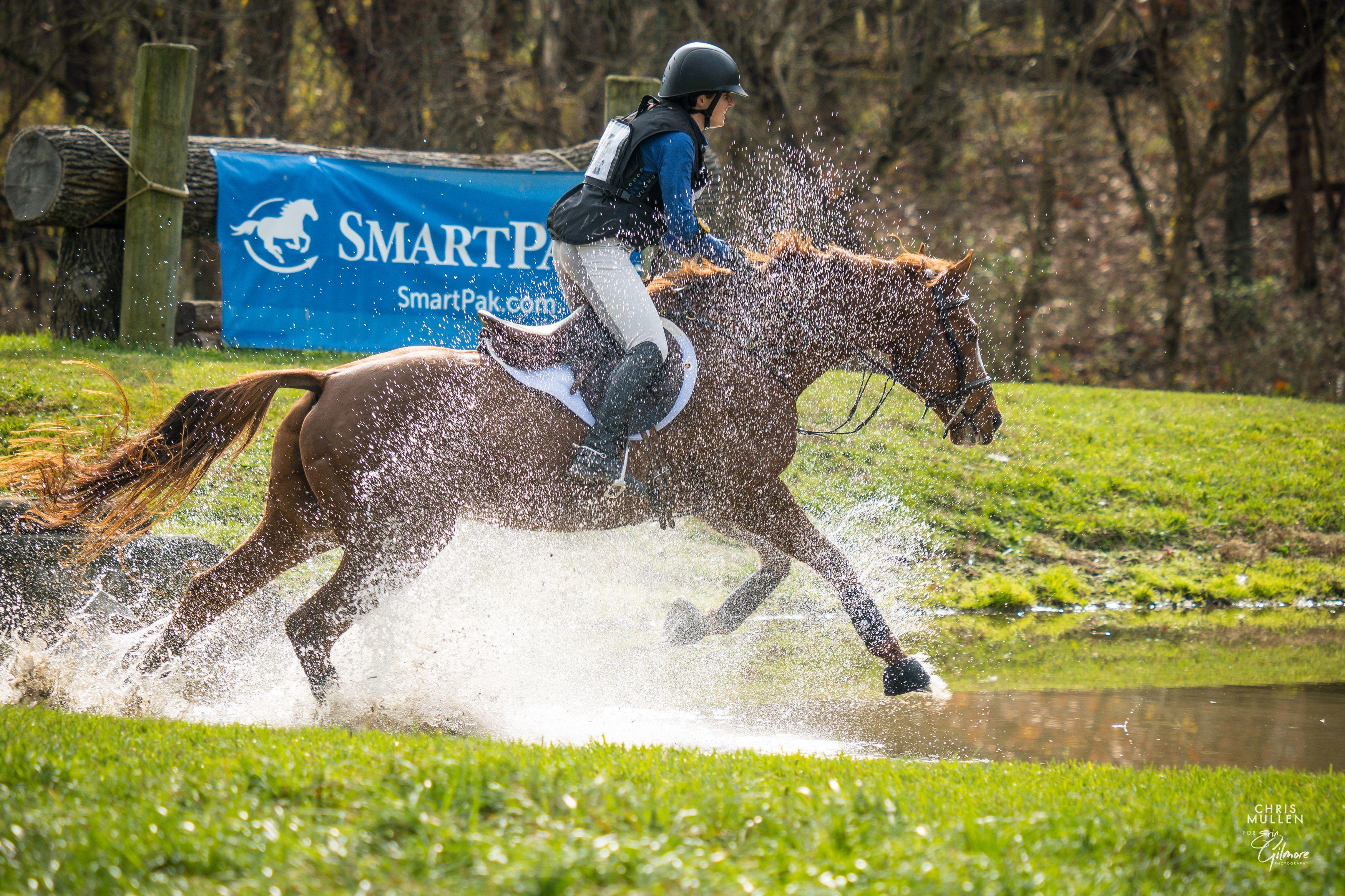 Don't miss Morven Park's Fall International Horse Trials & CCI!
