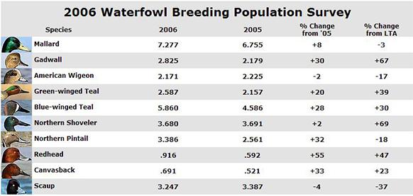 BPOP: Duck Numbers, Habitat Conditions Improve