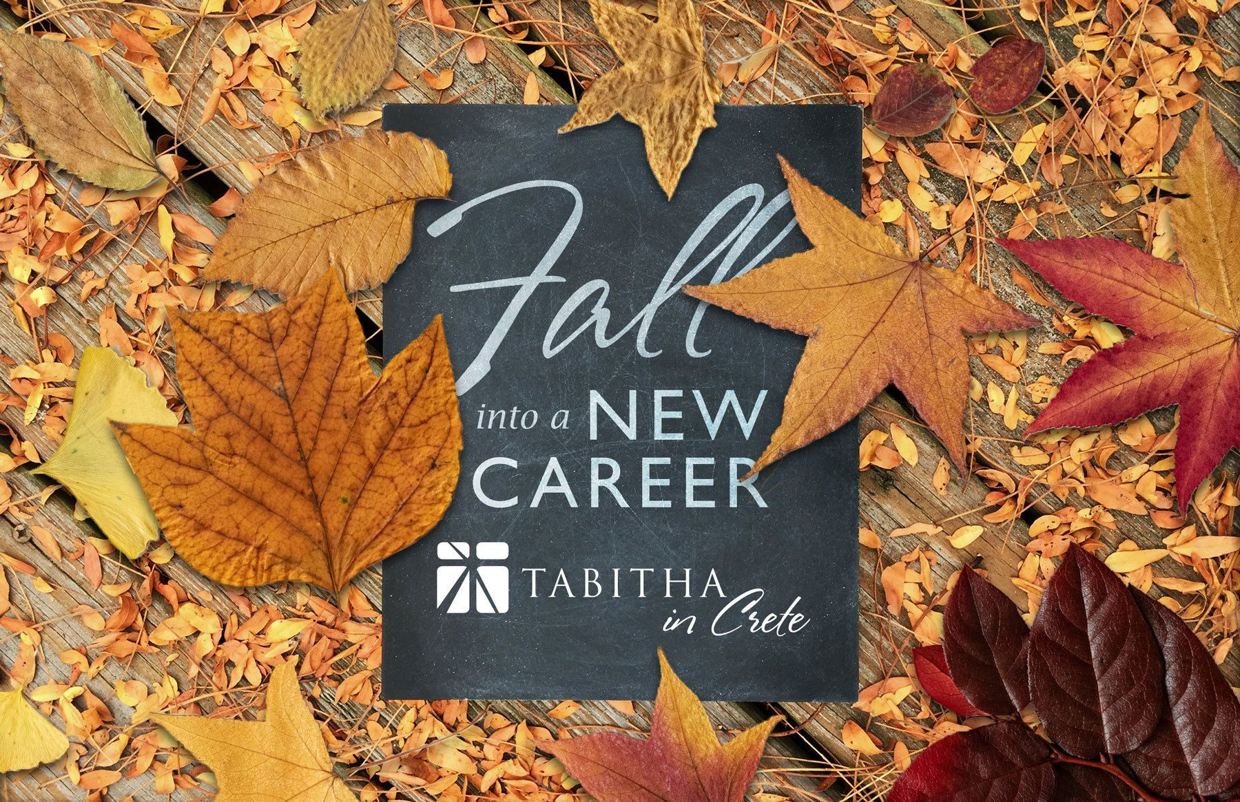 Fall into a new career
