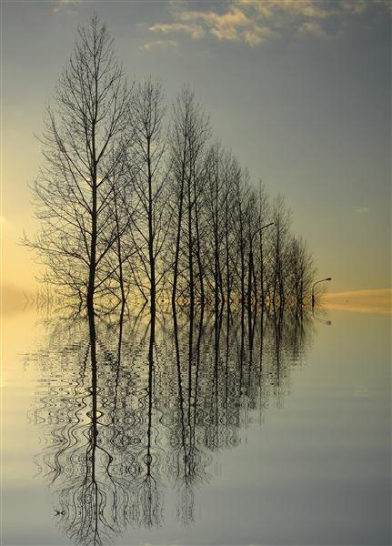 PRIME Reflections