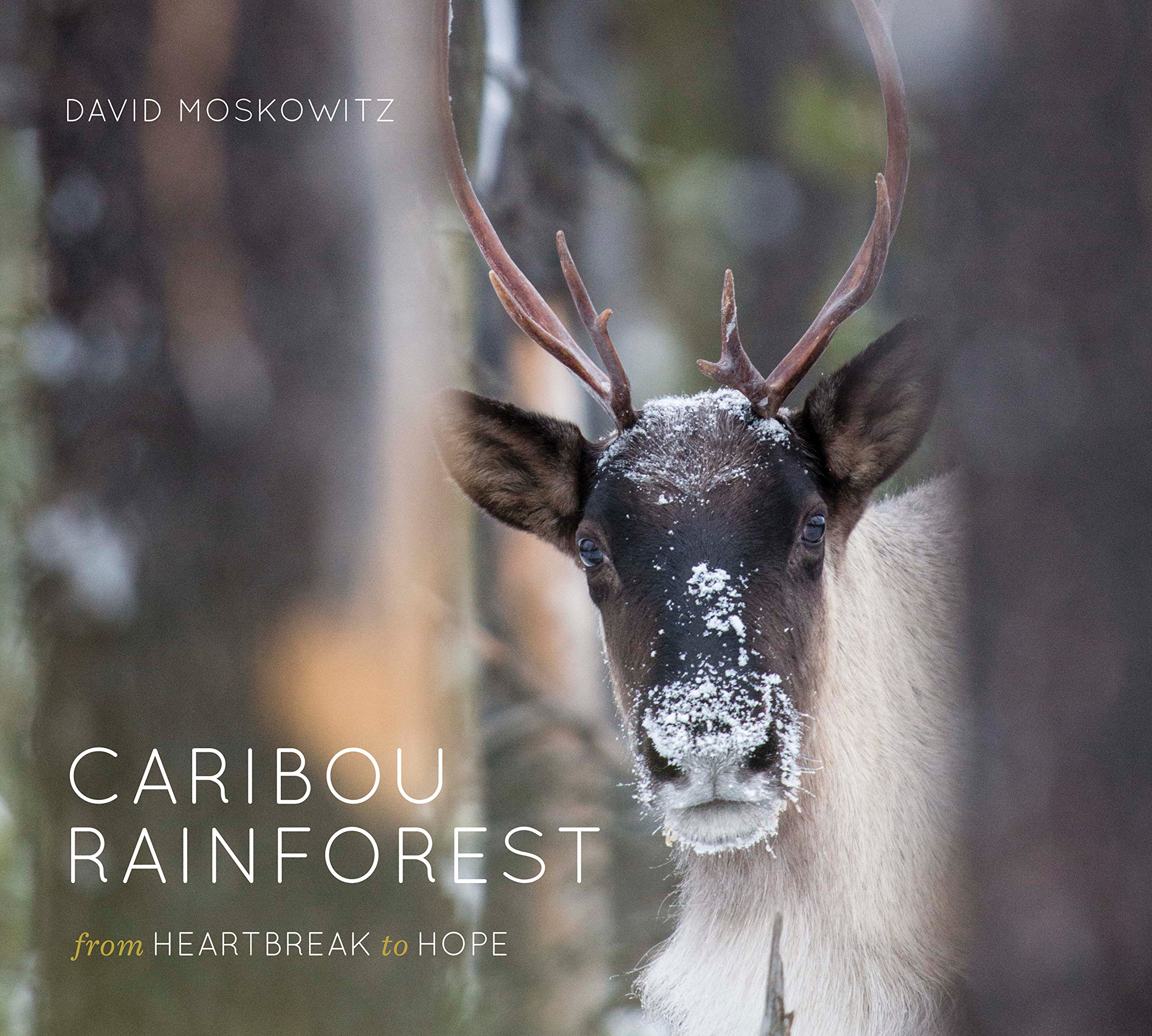 Special Red Barn Event | David Moskowitz, Caribou Rainforest: From Heartbreak to Hope