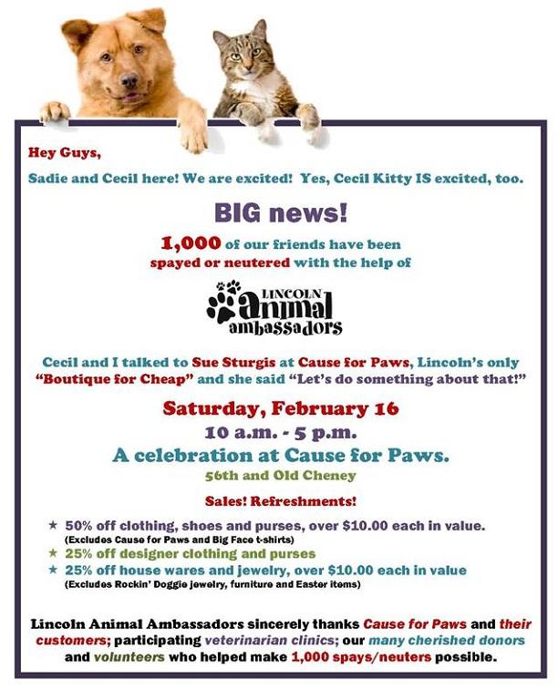 Lincoln Animal Ambassadors Celebrates 1,000 Spays and Neuters