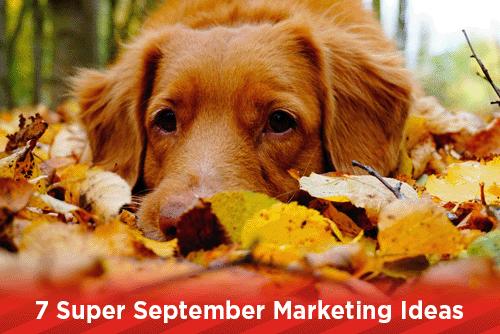 7 Super September Marketing Ideas