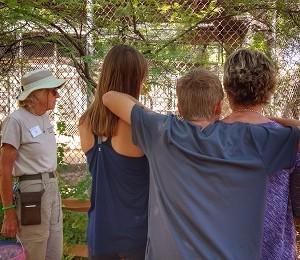 Walk with Wildlife Tour