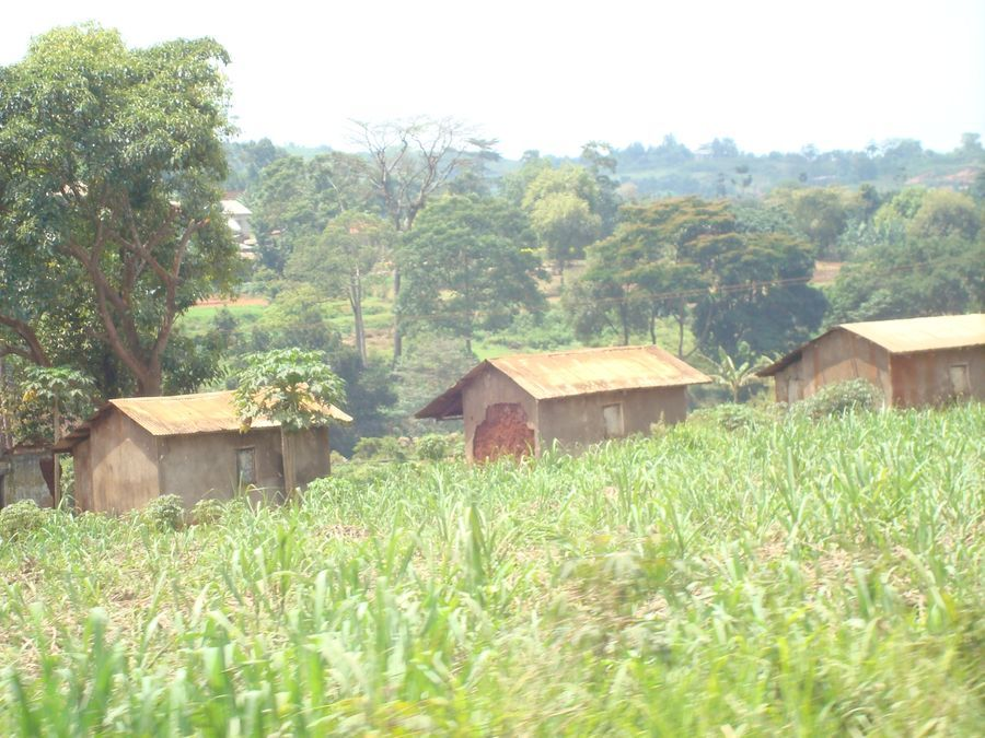 Uganda Countryside 2018, photo Mary Ann Cooper