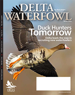 Winter Issue Highlights Duck Hunters Tomorrow