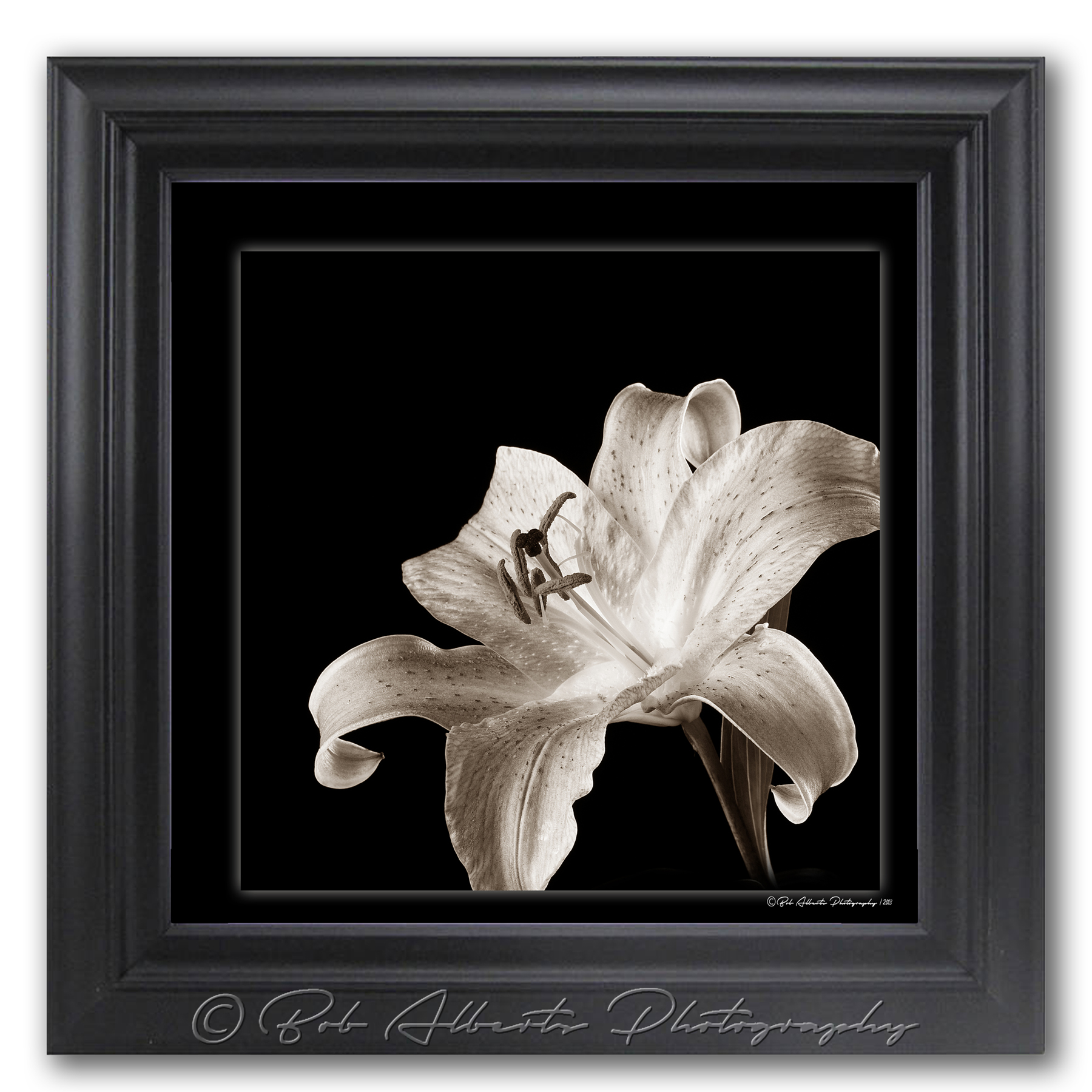 Framed Lilly Print
