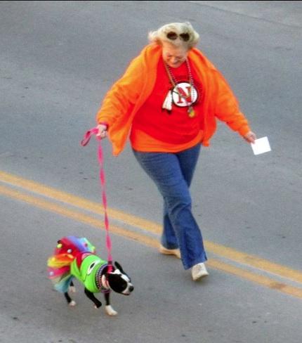 Mardi Gras Pet Parade was a success!