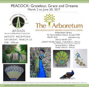 PEACOCK: Grandeur, Grace and Dreams