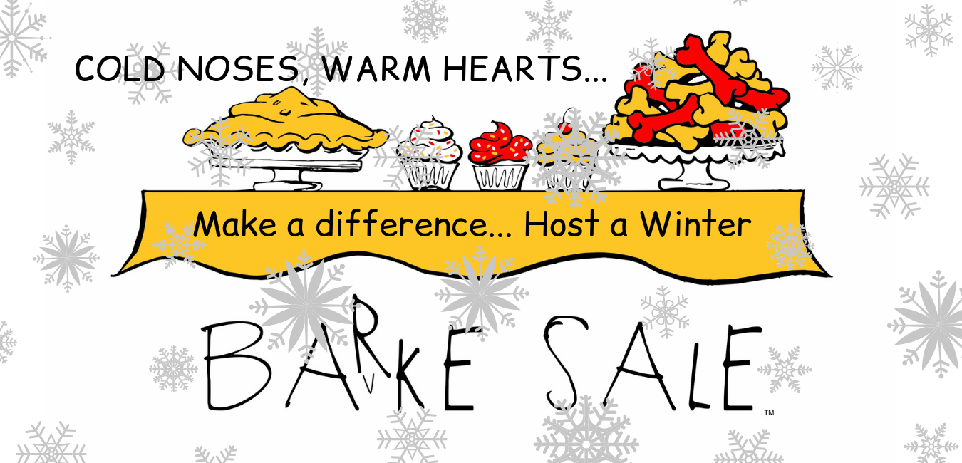 Winter BARKE SALE