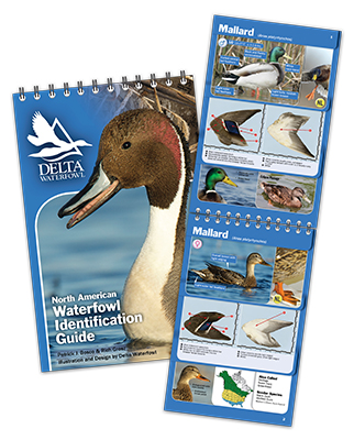 Made For Your Blind Bag: Delta's New Waterfowl ID Guide