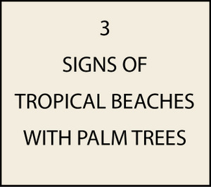 L21100 - Signs of Tropical Beaches with Palm Tree and Conch  or Sailboat