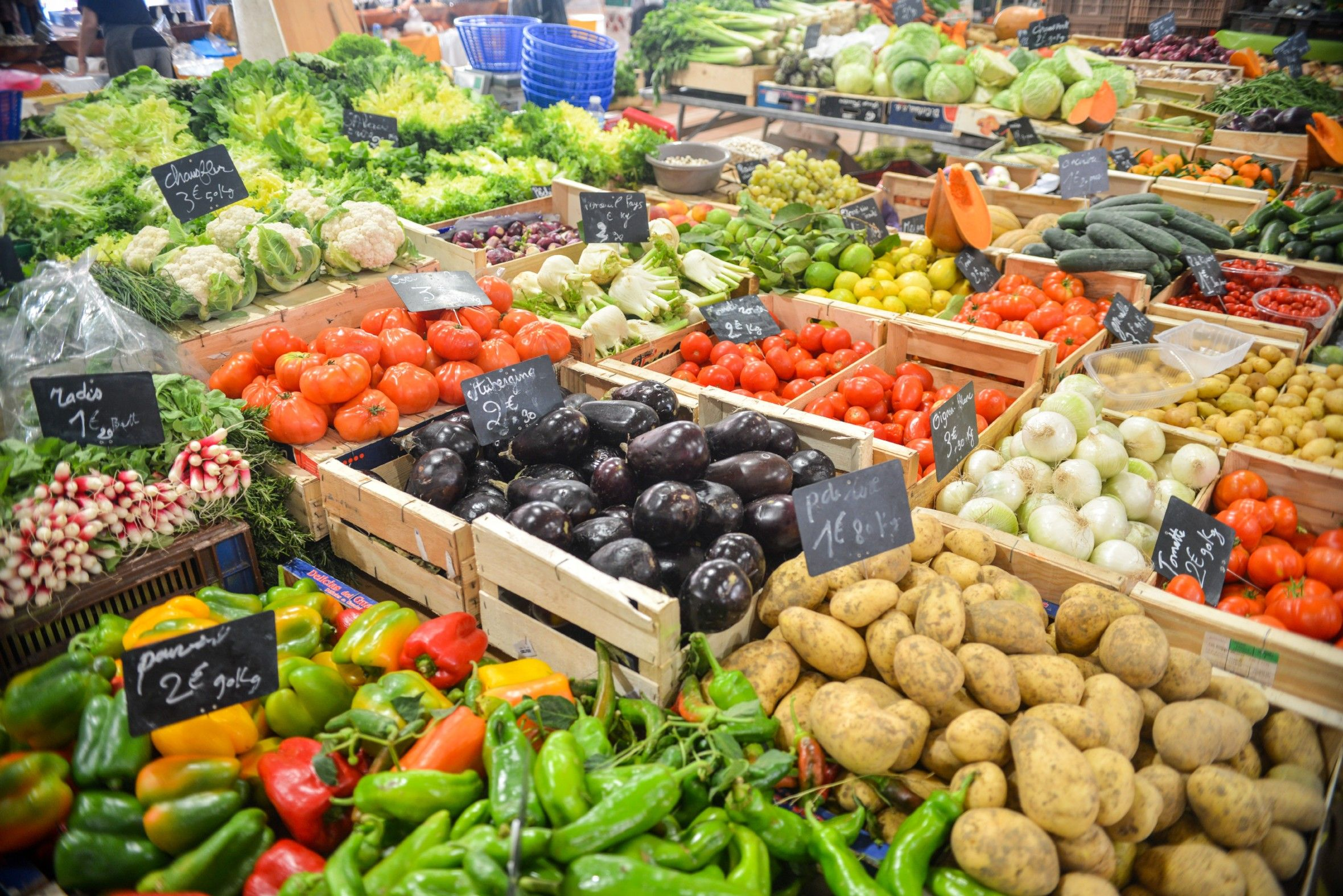How to Begin a Plant Based Diet