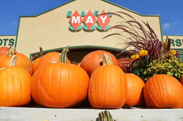 Earl May's Annual Pumpkin Fest!