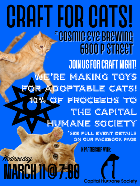 Crafts for Cats at Cosmic Eye Brewing