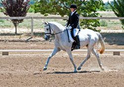 Five Dressage Instructors Awarded Grants from The Dressage Foundation