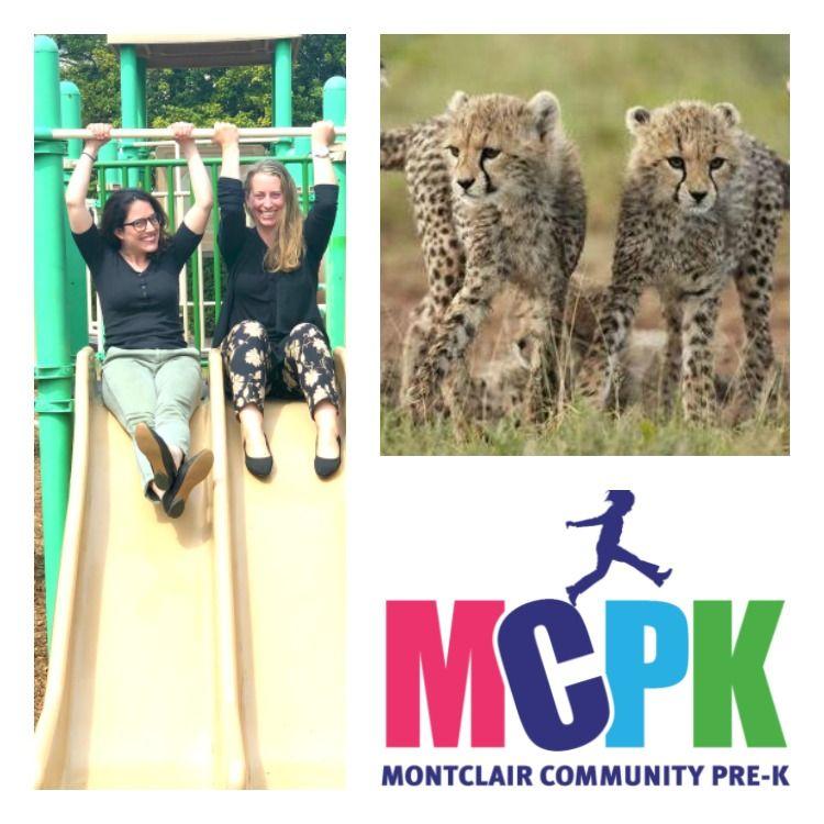 MCPK Cheetahs, Not Cheatahs