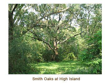 Smith Oaks