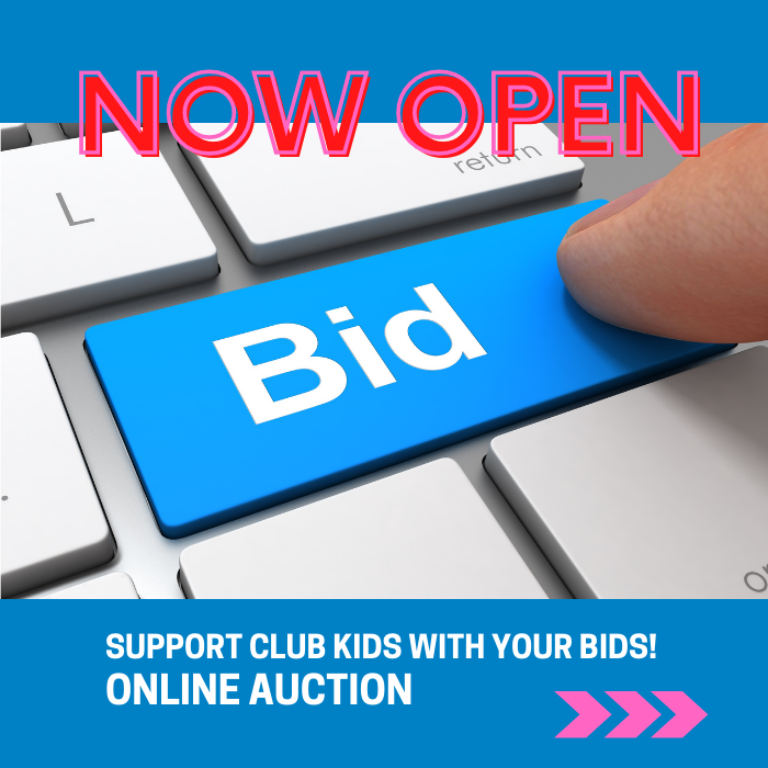 Online Auction Now Open!