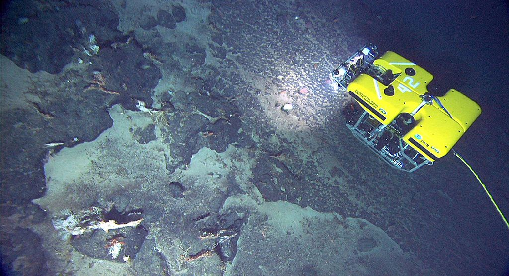 An ROV explores the ocean floor