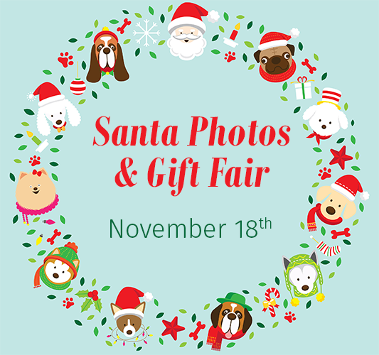 Santa Photos and Holiday Gift Fair