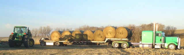 Pasture Fencing and Hay on its Way